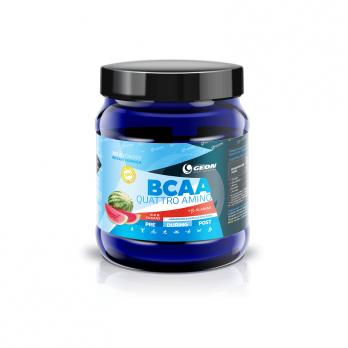 BCAA GEON BCAA Quattro Amino 350 гр